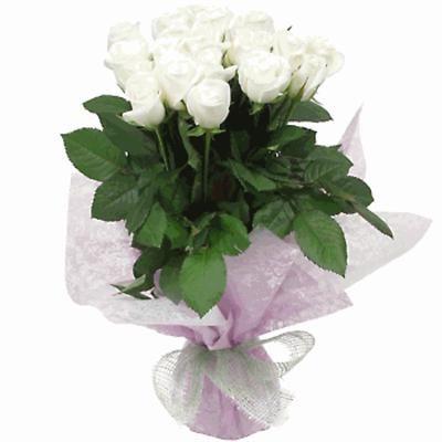 bele ruze